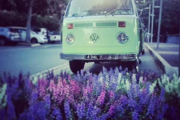 Dale VW Kombi Microbus for hire
