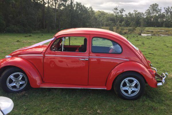 Jude VW Beetle side profile