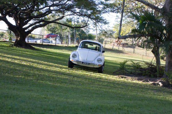 Lucy VW Beetle paddock