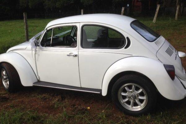 Lucy VW Beetle2